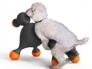 為了解決狗兒的性需求,法國設計團隊與獸醫師合作,研發「情趣狗娃」,耐高溫、柔軟不傷皮膚,還有「仿真觸感」。(圖/HOTDOLL)